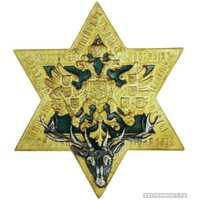 Знак Лодзинского отдела Императорского общества правильной охоты, фото 1