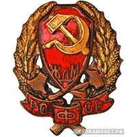 Нагрудный знак командного состава железнодорожной милиции РСФСР, фото 1