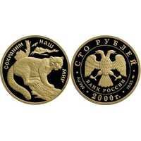 100 рублей 2000 год (золото, Снежный барс), фото 1