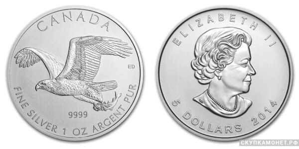 5 долларов 2014 года «Белоголовый орлан»(серебро, Канада), фото 1