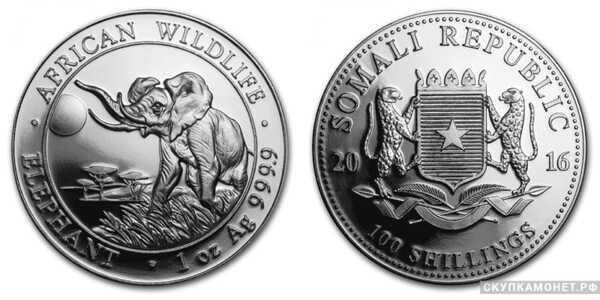 100 шилингов 2016 года «Слон»(серебро, Сомали), фото 1