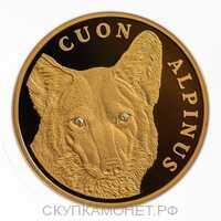 500 Тенге 2005 года, Красный волк, фото 1