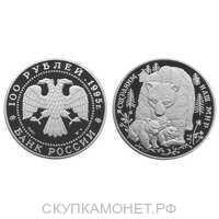 100 рублей 1995 Сохраним наш мир. Бурый медведь, фото 1
