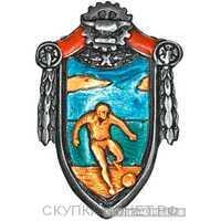 Призовой спортивный жетон, знаки профессиональных союзов, фото 1