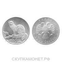 3 рубля 1995 года, «Соболь», фото 1