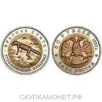 50 рублей 1993 Туркменский эублефар, фото 1
