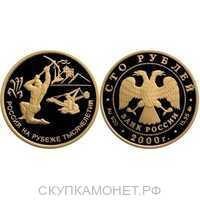 100 рублей 2000 год (золото, 300-летие учреждения Петром I Приказа рудокопных дел), фото 1
