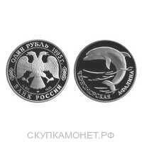 1 рубль 1995 Красная книга. Черноморская афалина, фото 1